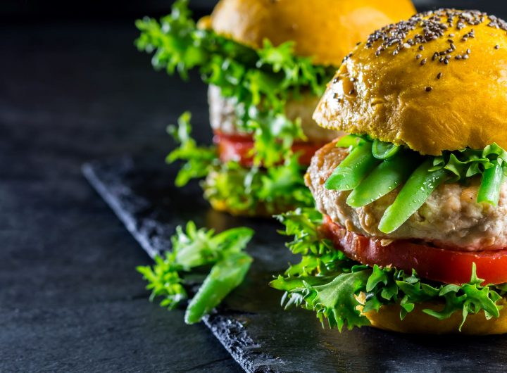 envato colored-yellow-burgers-chicken-burgers-hamburgers--QZS5AB3 (1)