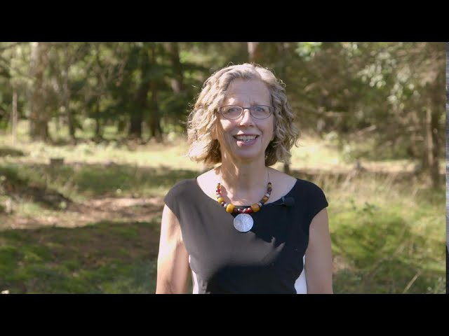 Inger Andersen message for International Day of Clean Air for blue skies 2020
