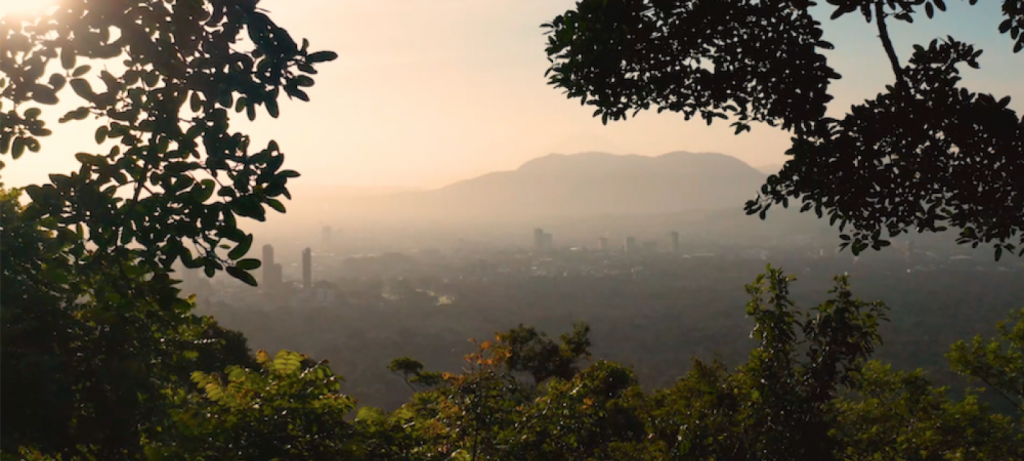 Regreening San Salvador to fight climate change