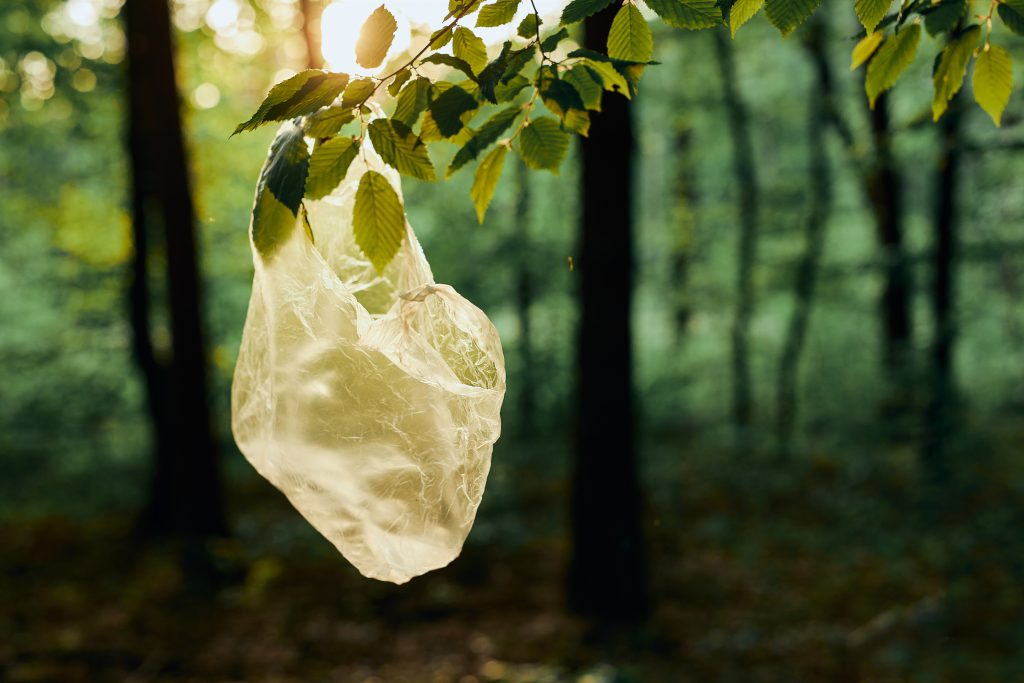 Plastic waste left in forest