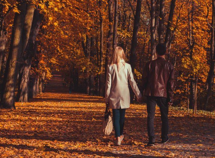 friends-in-fall-walking-down-the-autumn-park-ZNGSL2G
