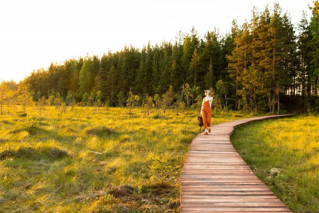 woman-naturalist-walking-on-path-through-peat-bog--KZ9K3N2
