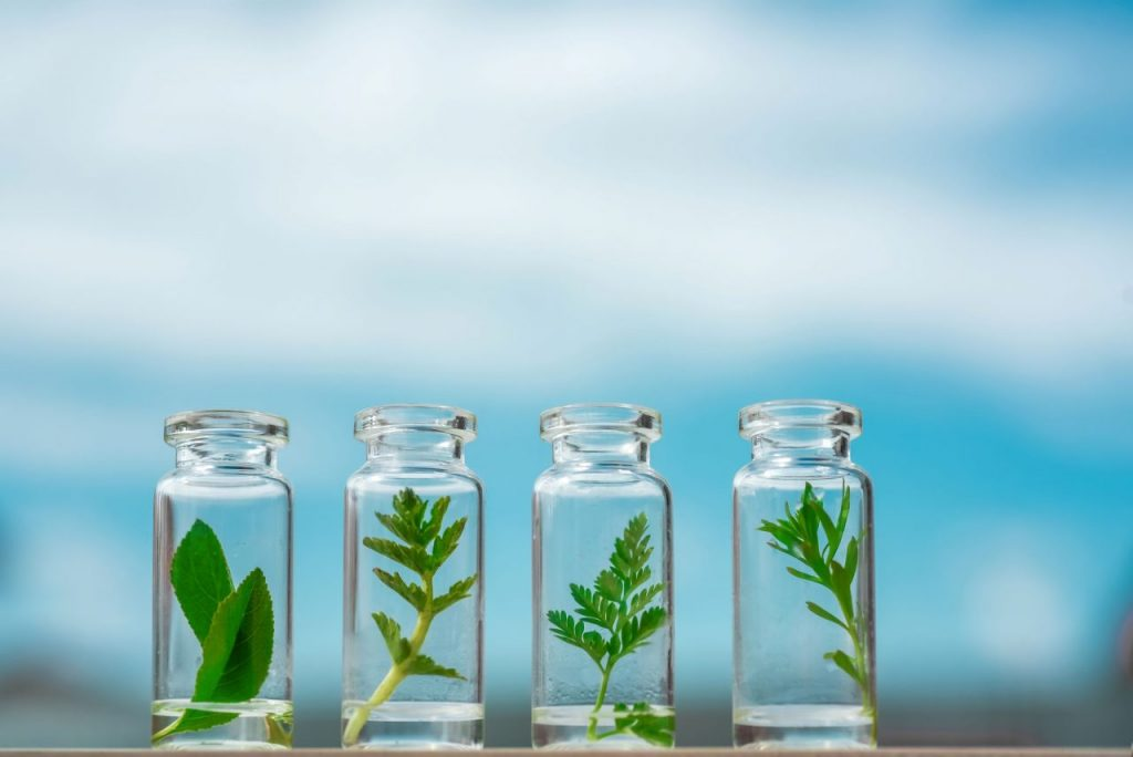 glass-bottles-test-tubes-with-plant-sprouts-on-a-b-ZP6TC2Q