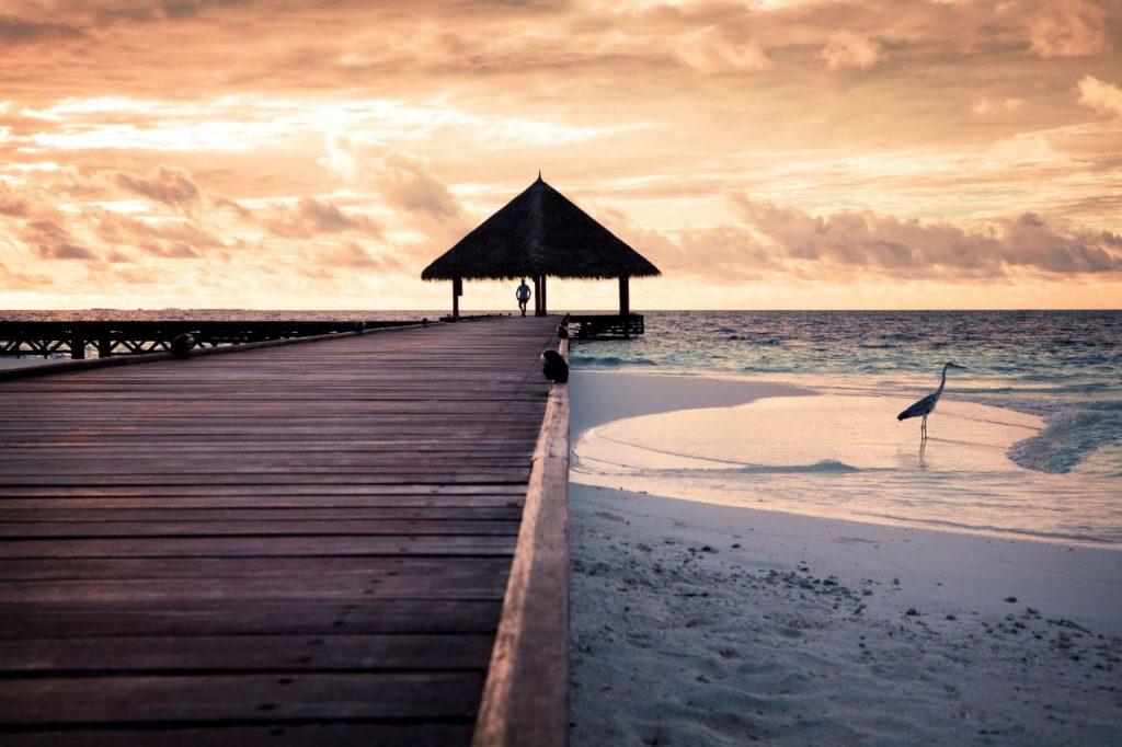 tropical-beach-in-the-maldives-PTVCTDZ